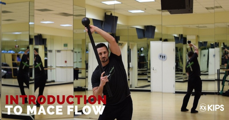Introduction to Mace Flow